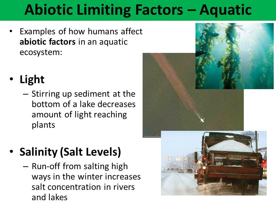 Abiotic Limiting Factors – Aquatic