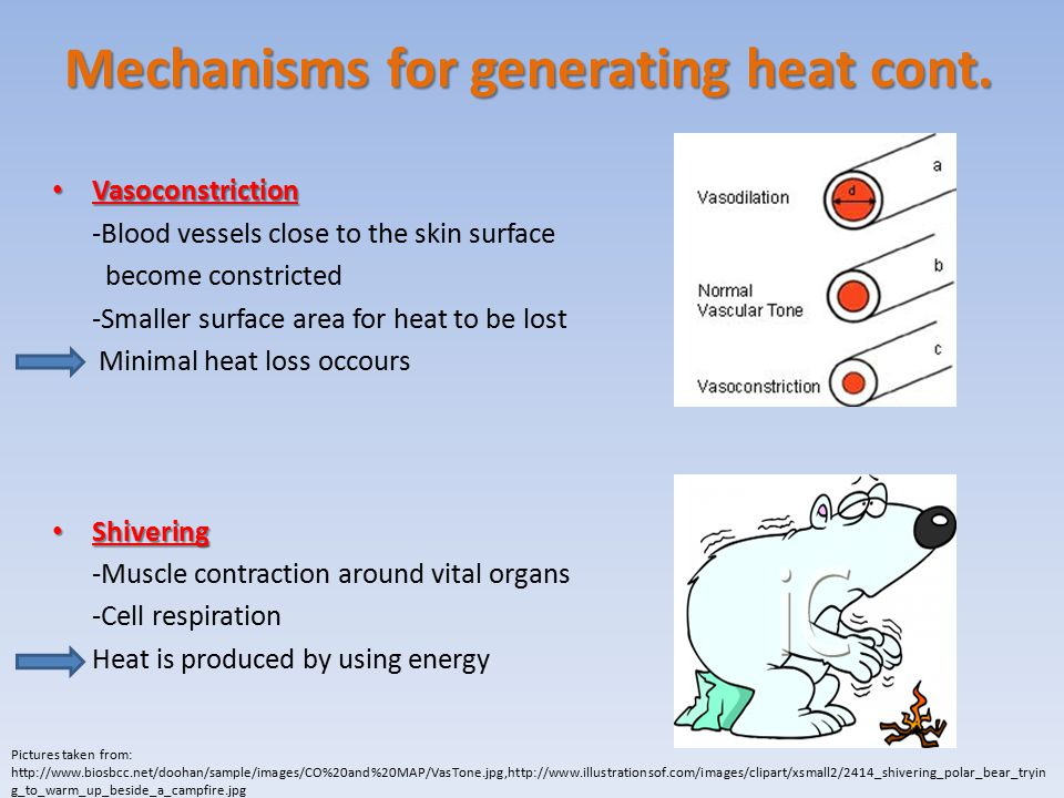 Mechanisms for generating heat cont.