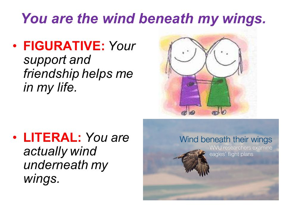 You are the wind beneath my wings.