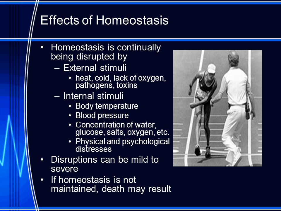 Effects of Homeostasis
