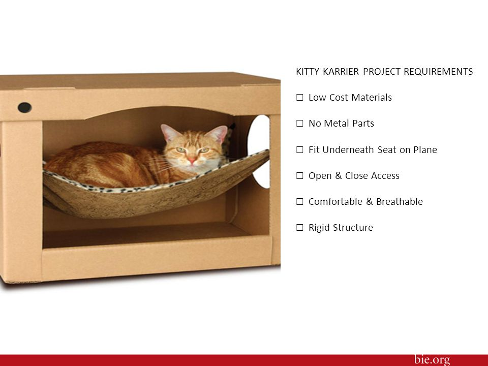 KITTY KARRIER PROJECT REQUIREMENTS ☐ Low Cost Materials
