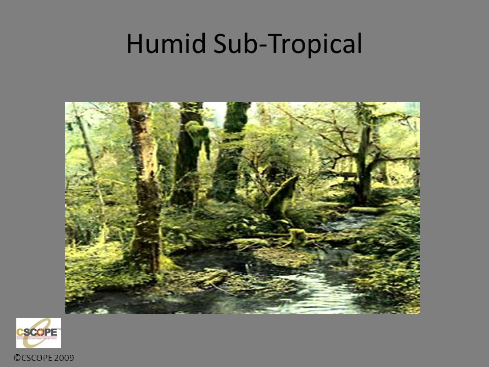 Humid Sub-Tropical