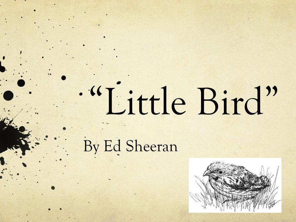 Little Bird By Ed Sheeran