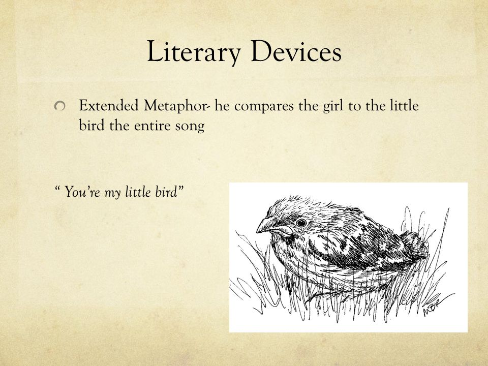 Literary Devices Extended Metaphor- he compares the girl to the little bird the entire song.