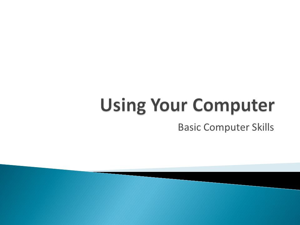 Using Your Computer Basic Computer Skills