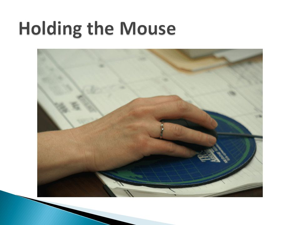 Holding the Mouse