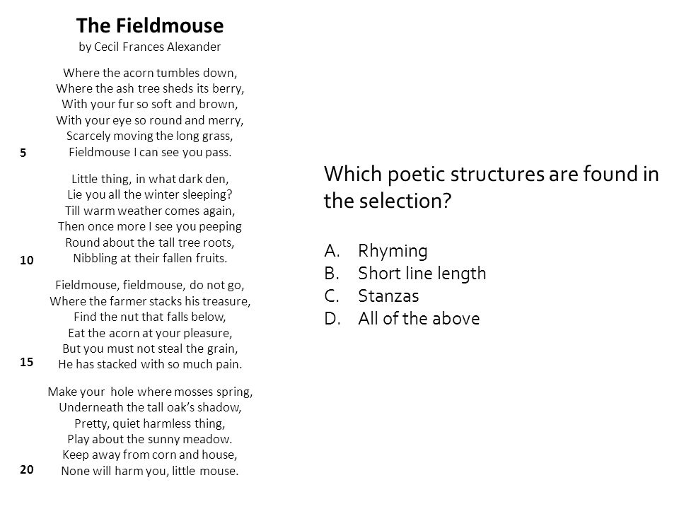 Which poetic structures are found in the selection