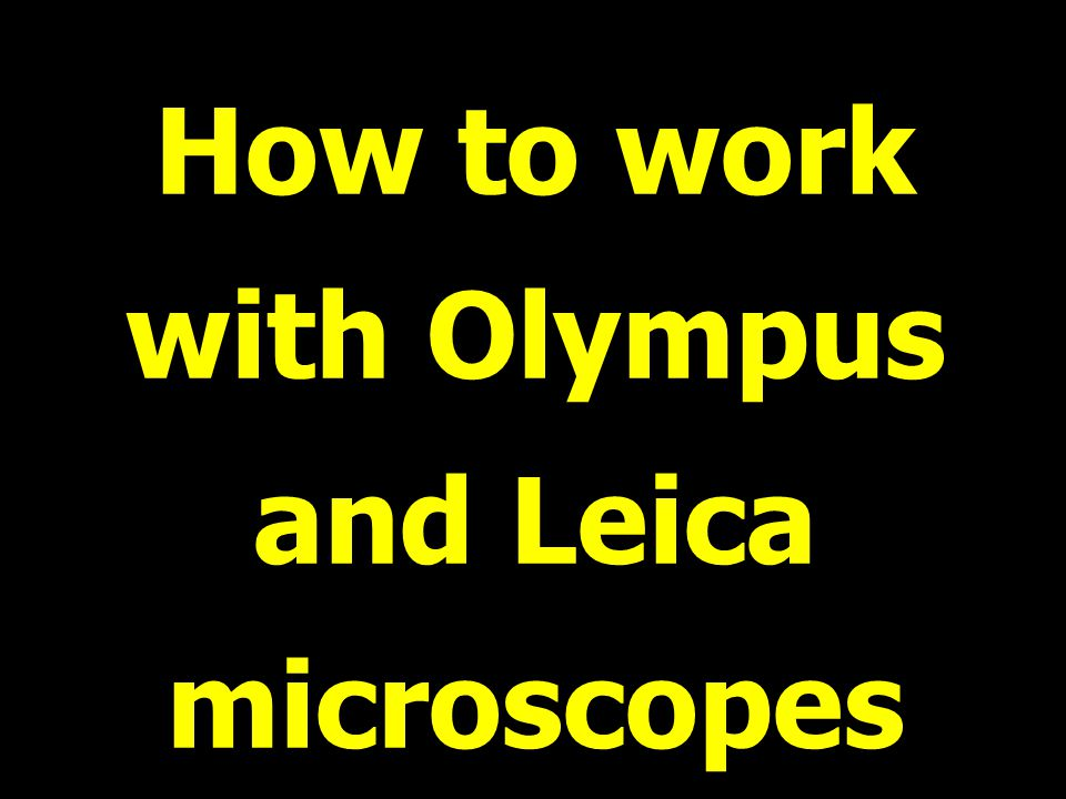 How to work with Olympus and Leica microscopes