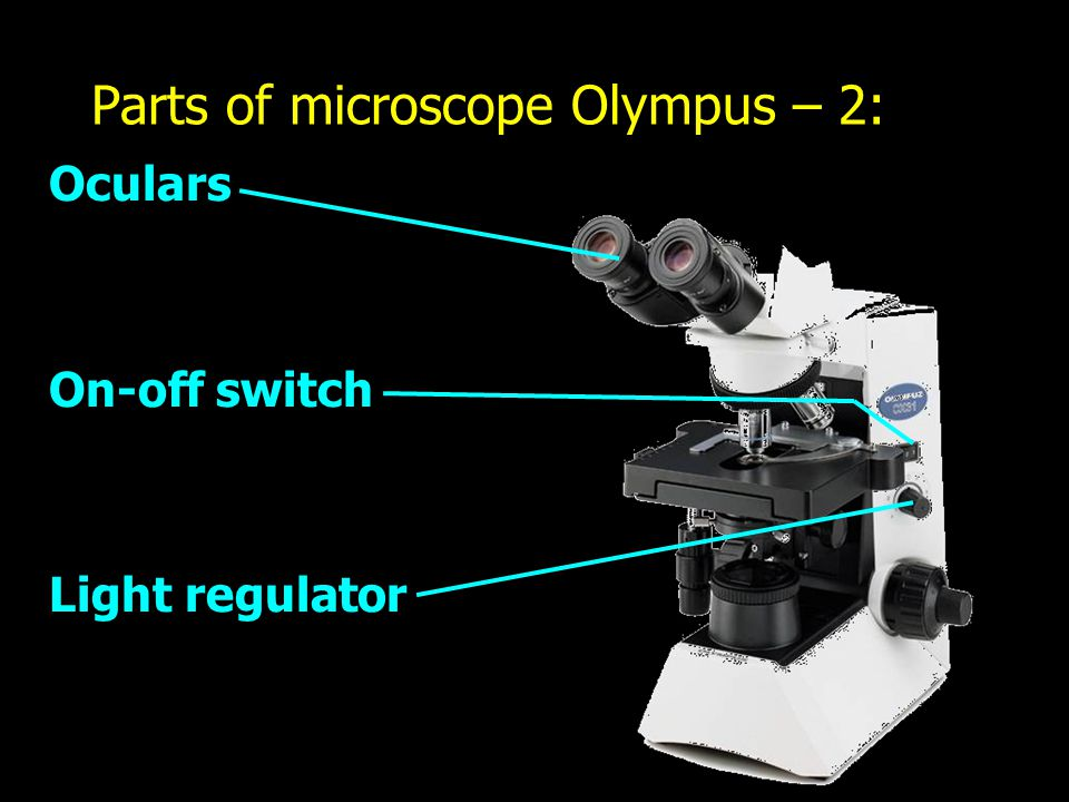 Parts of microscope Olympus – 2: