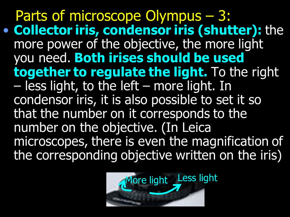 Parts of microscope Olympus – 3: