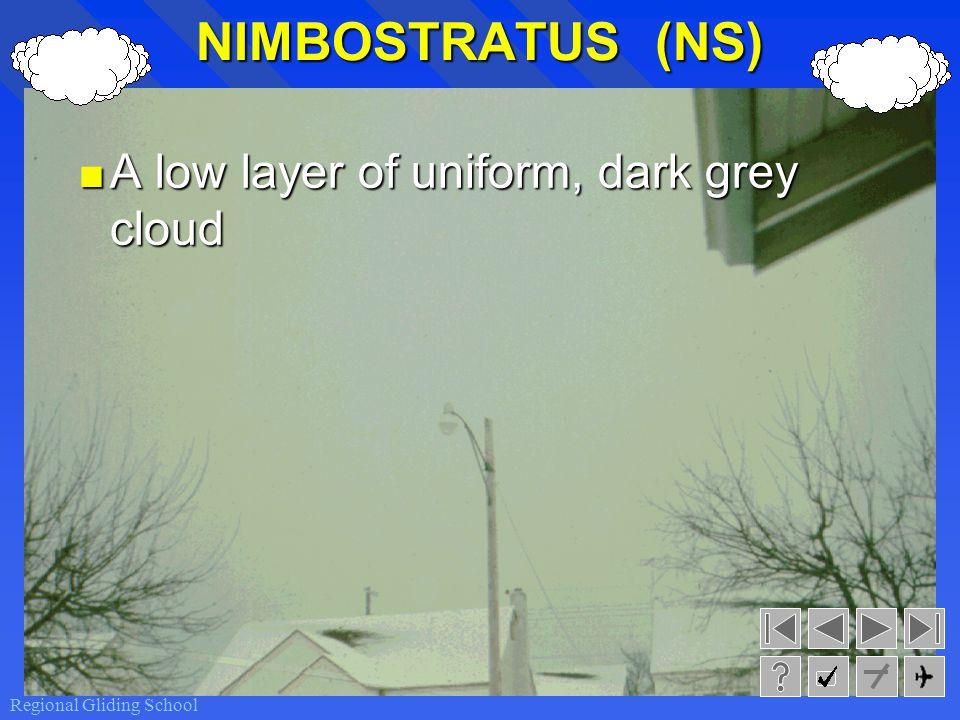 NIMBOSTRATUS (NS) A low layer of uniform, dark grey cloud