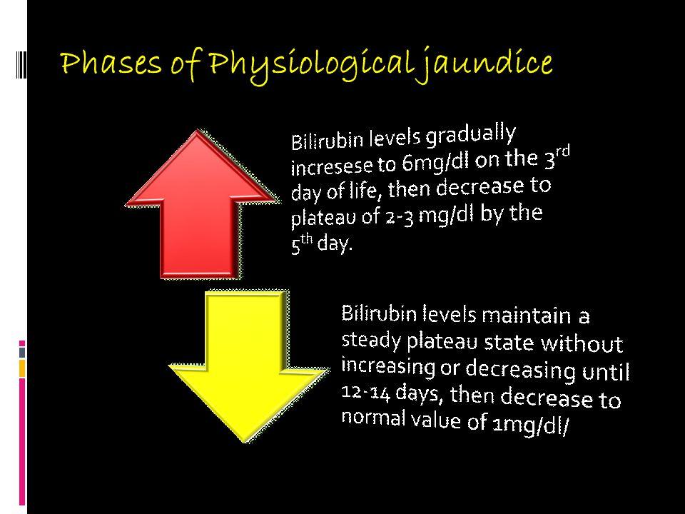 Phases of Physiological jaundice
