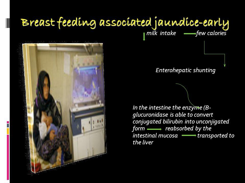 Breast feeding associated jaundice-early