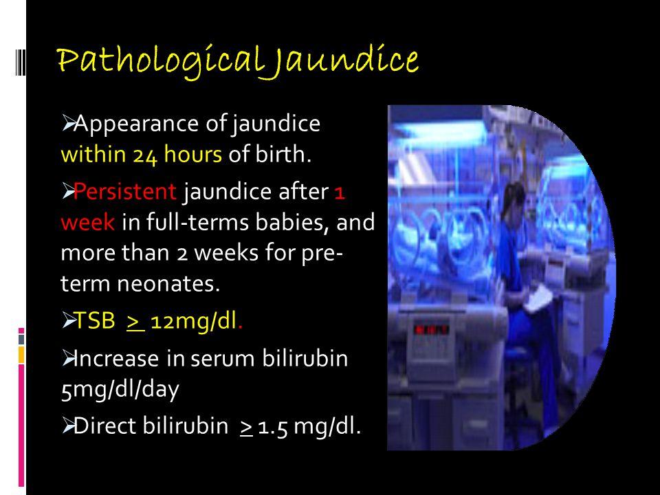 Pathological Jaundice