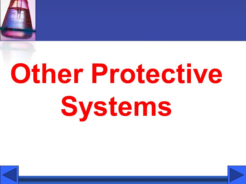 Other Protective Systems