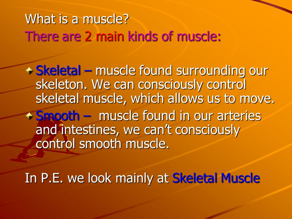 What is a muscle There are 2 main kinds of muscle:
