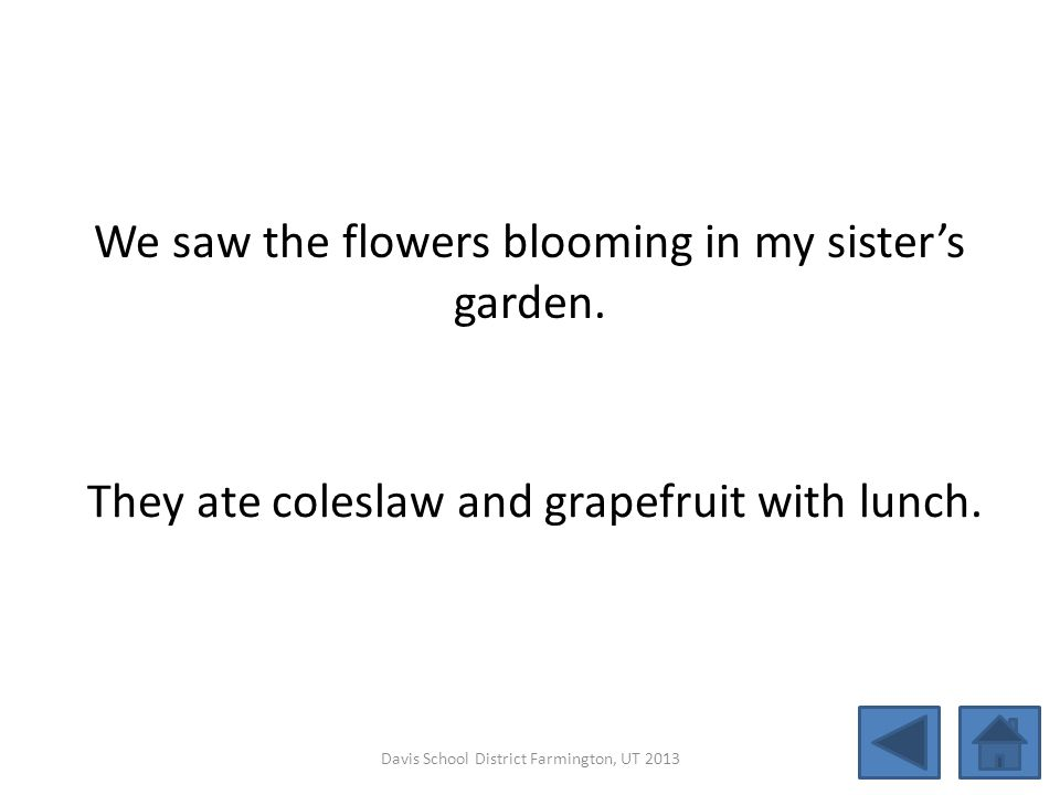 We saw the flowers blooming in my sister's garden.