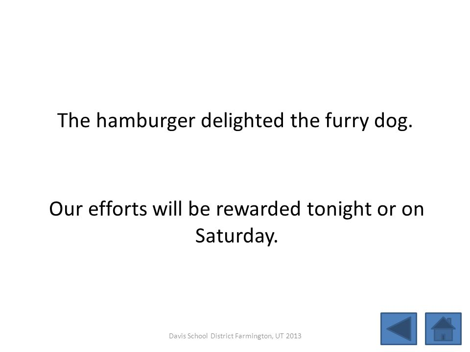 The hamburger delighted the furry dog.