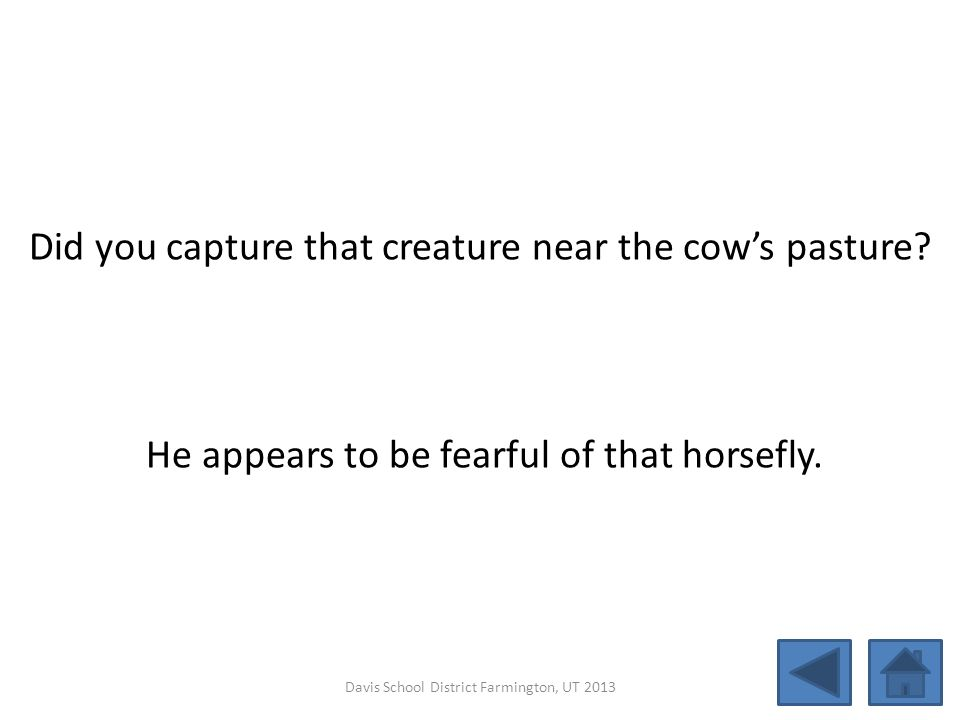 Did you capture that creature near the cow's pasture