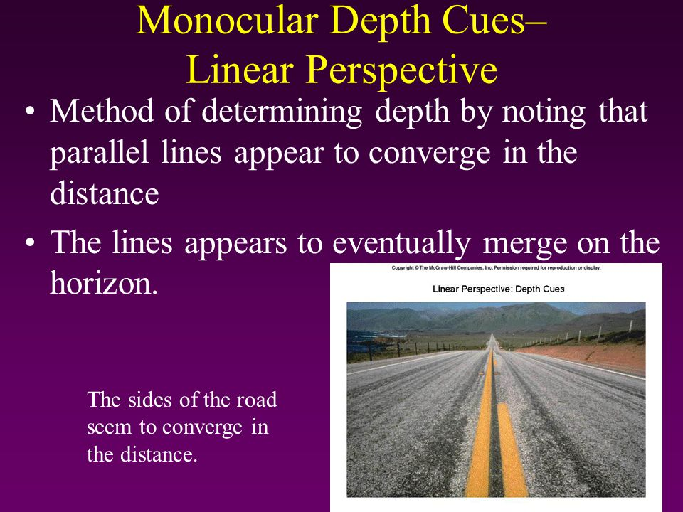 Monocular Depth Cues– Linear Perspective