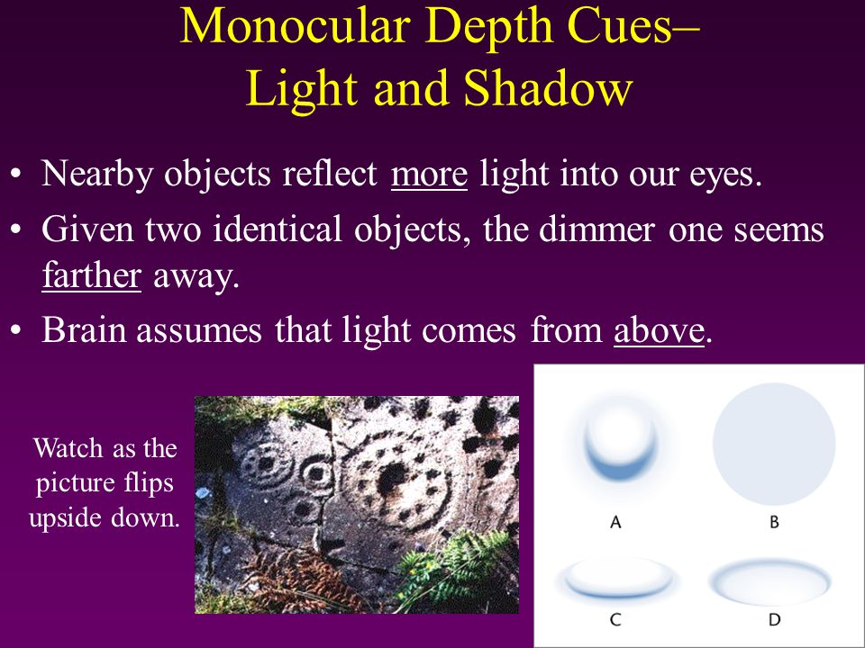 Monocular Depth Cues– Light and Shadow