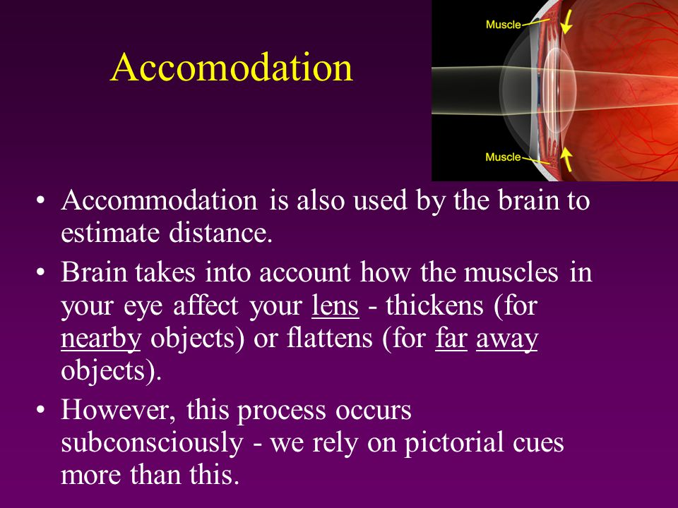 Accomodation Accommodation is also used by the brain to estimate distance.