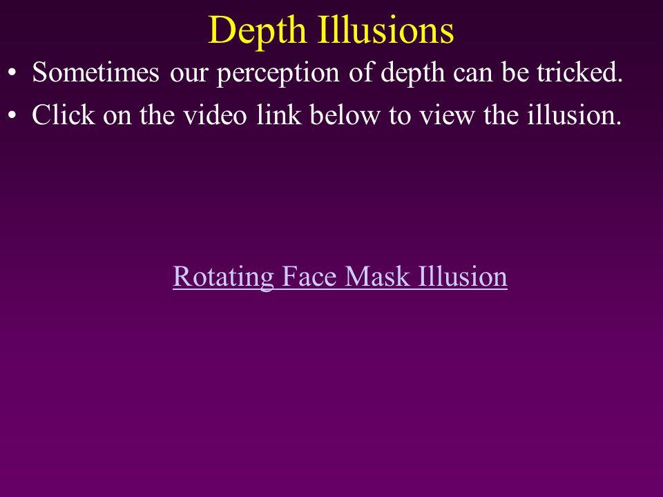 Rotating Face Mask Illusion