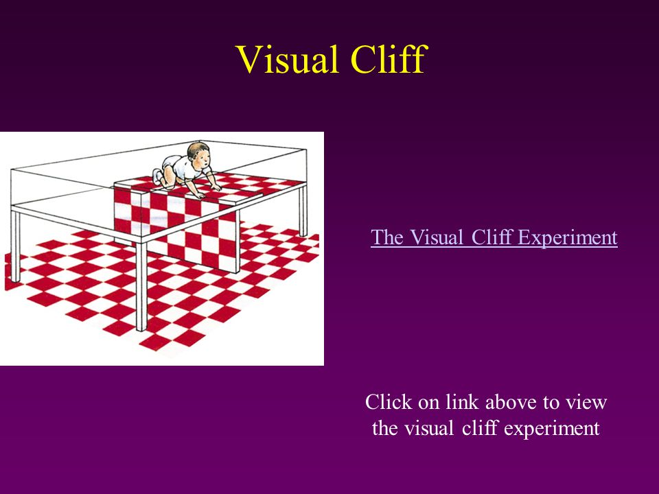 Visual Cliff The Visual Cliff Experiment