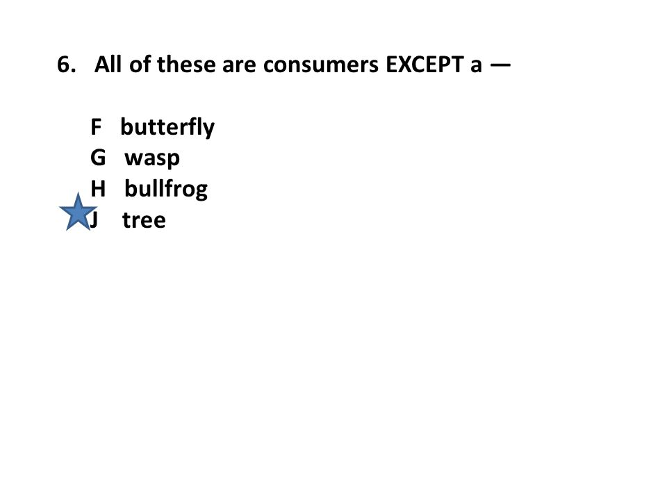 6. All of these are consumers EXCEPT a —