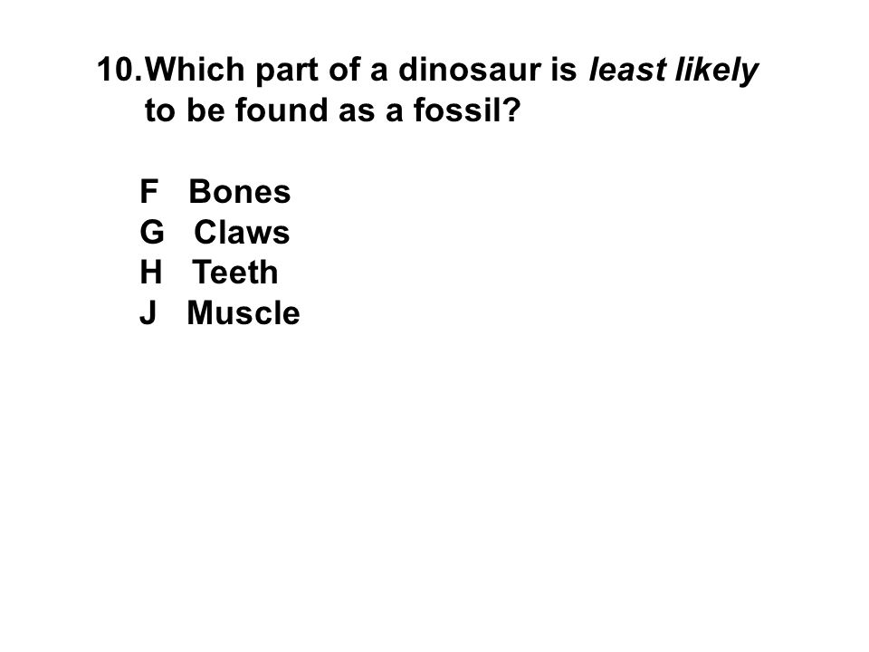 Which part of a dinosaur is least likely to be found as a fossil