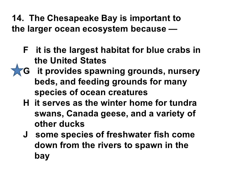 14. The Chesapeake Bay is important to