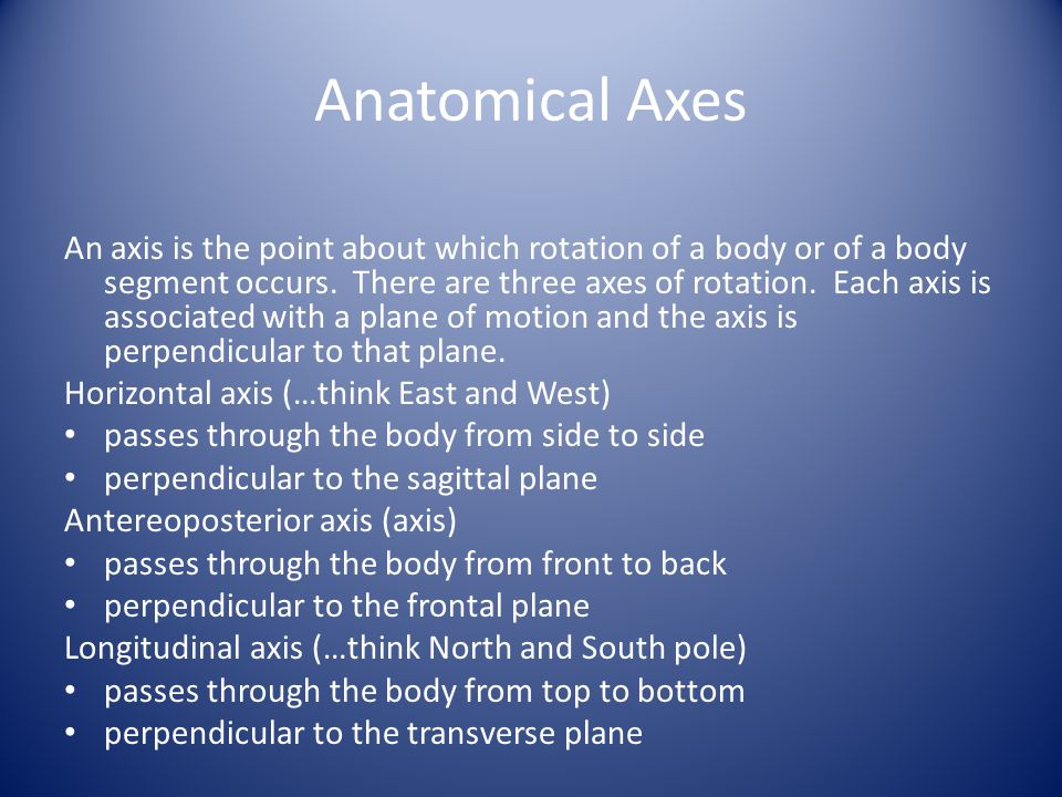 Anatomical Axes