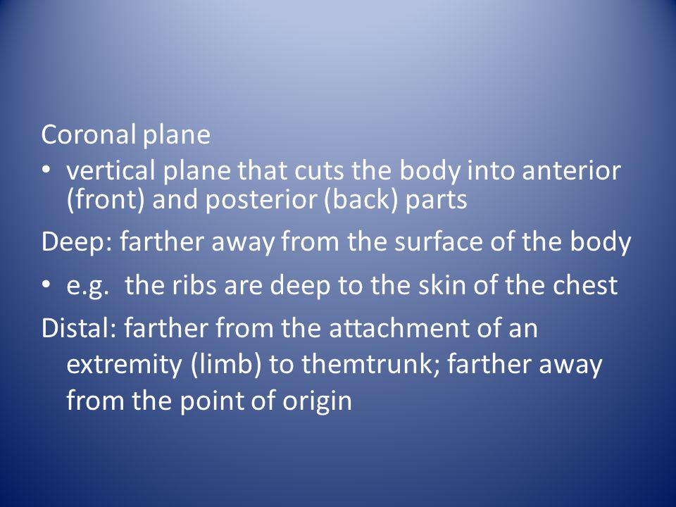 Coronal plane vertical plane that cuts the body into anterior (front) and posterior (back) parts. Deep: farther away from the surface of the body.