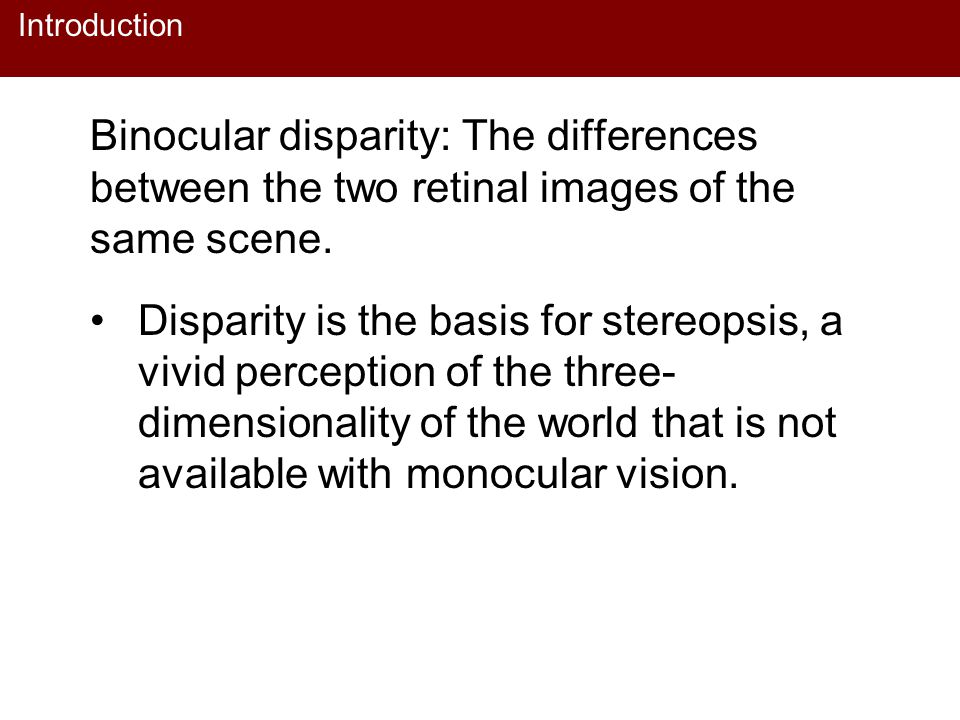 Introduction Binocular disparity: The differences between the two retinal images of the same scene.