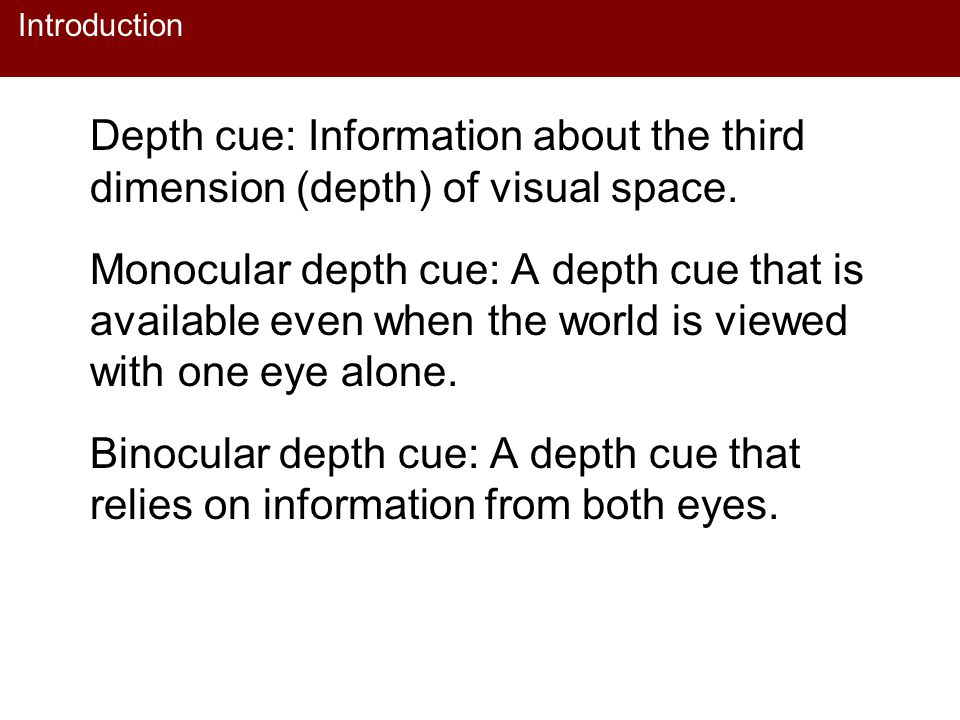 Introduction Depth cue: Information about the third dimension (depth) of visual space.