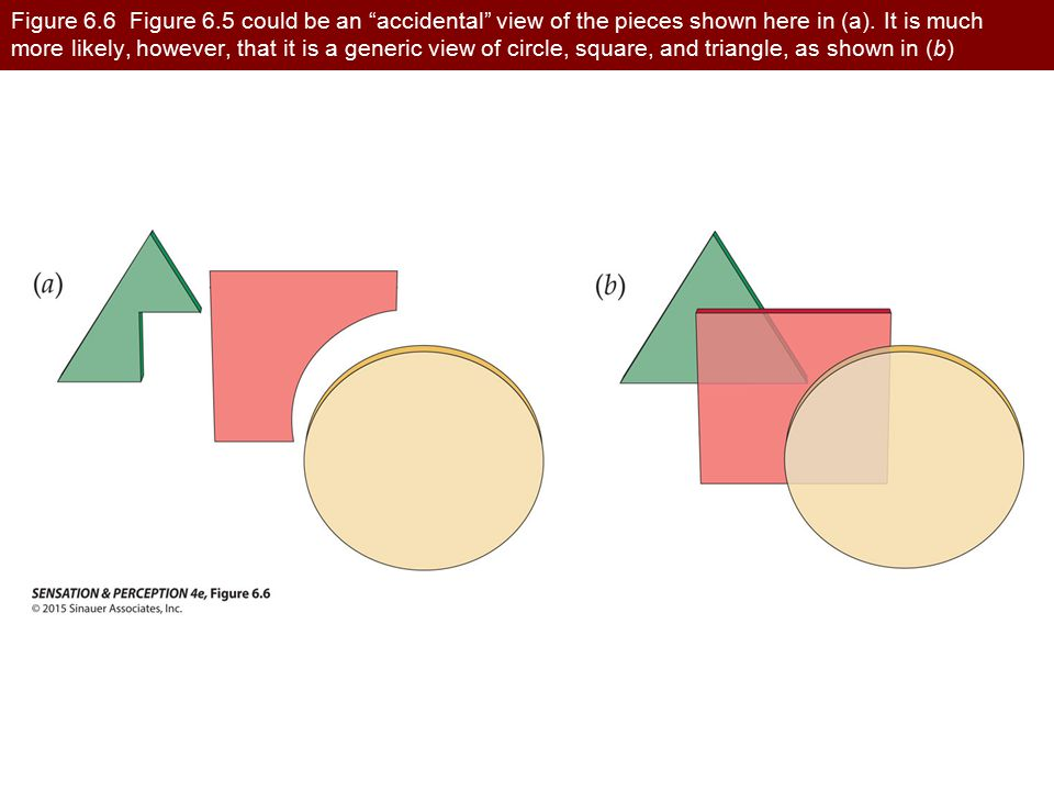 Figure 6.6 Figure 6.5 could be an accidental view of the pieces shown here in (a). It is much more likely, however, that it is a generic view of circle, square, and triangle, as shown in (b)