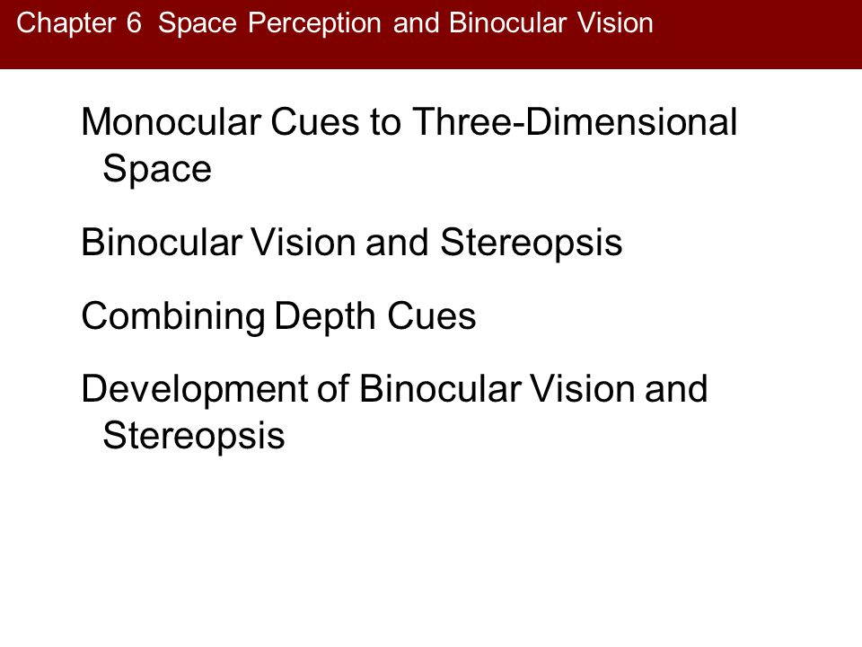Chapter 6 Space Perception and Binocular Vision