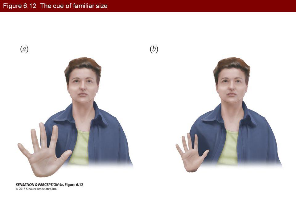 Figure 6.12 The cue of familiar size