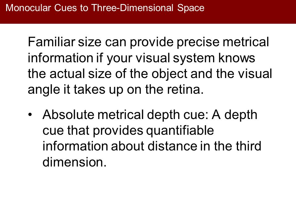 Monocular Cues to Three-Dimensional Space