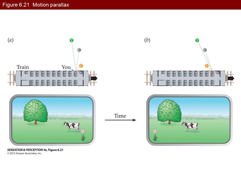 Figure 6.21 Motion parallax
