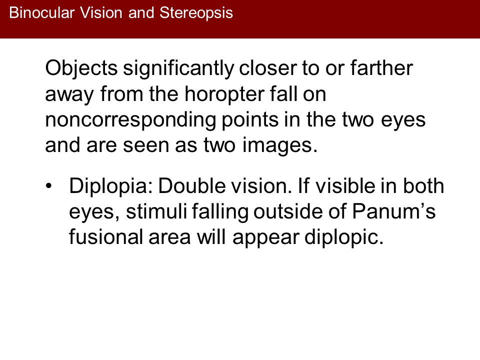 Binocular Vision and Stereopsis