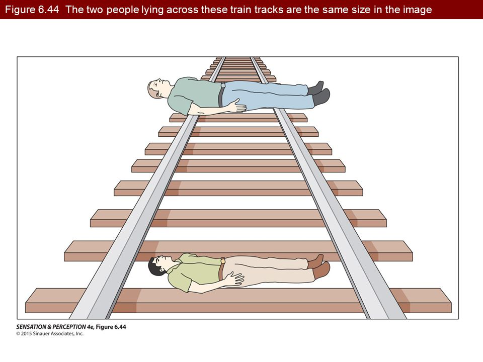 Figure 6.44 The two people lying across these train tracks are the same size in the image