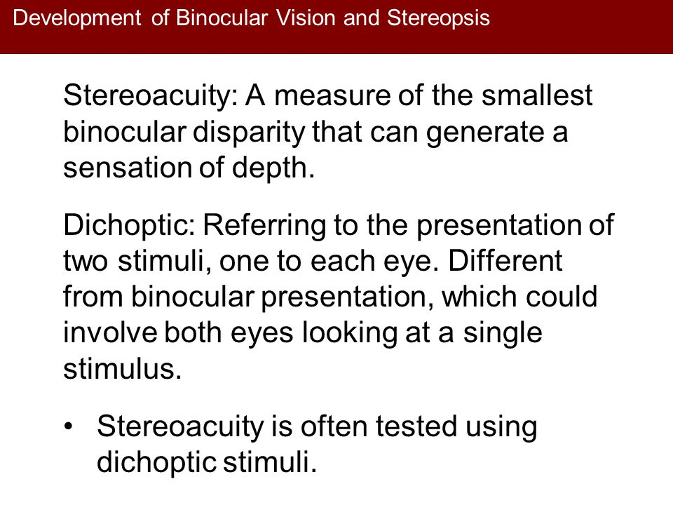 Development of Binocular Vision and Stereopsis