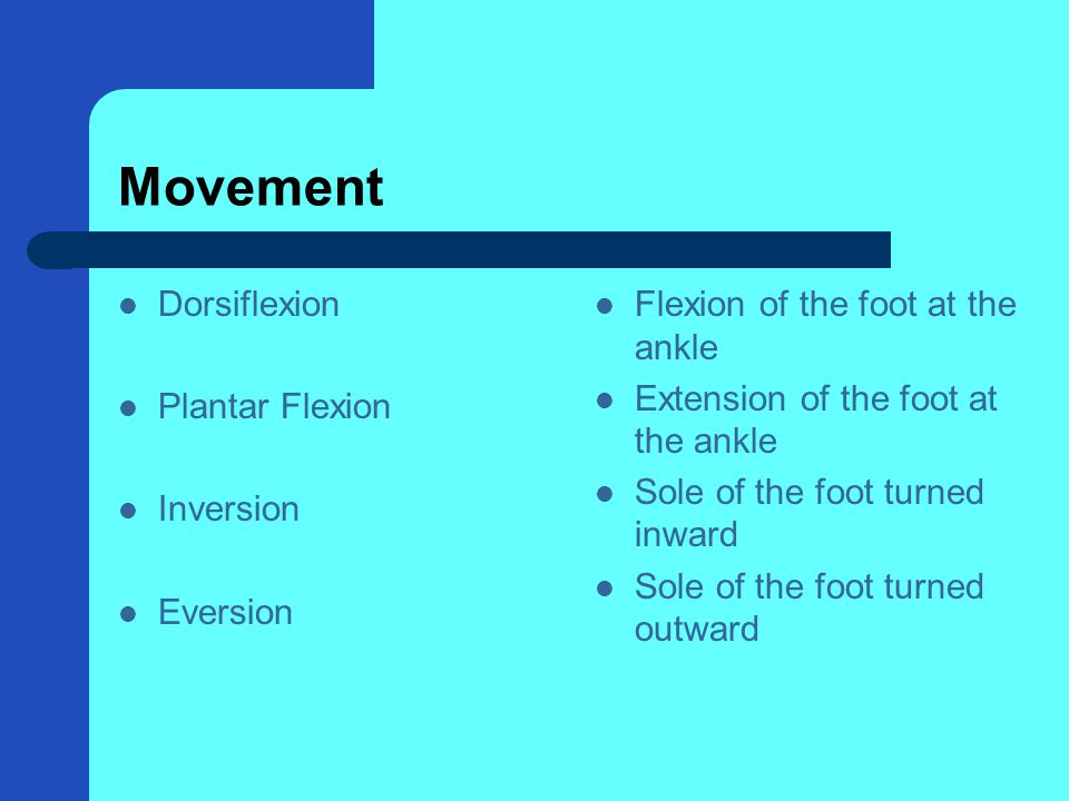 Movement Dorsiflexion Plantar Flexion Inversion Eversion