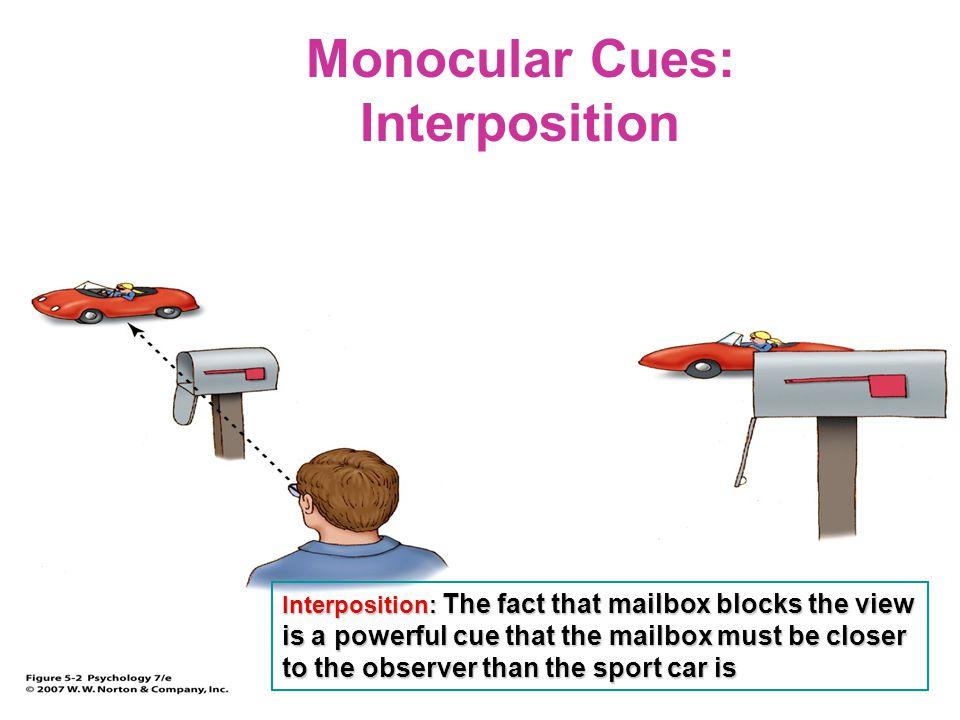Monocular Cues: Interposition