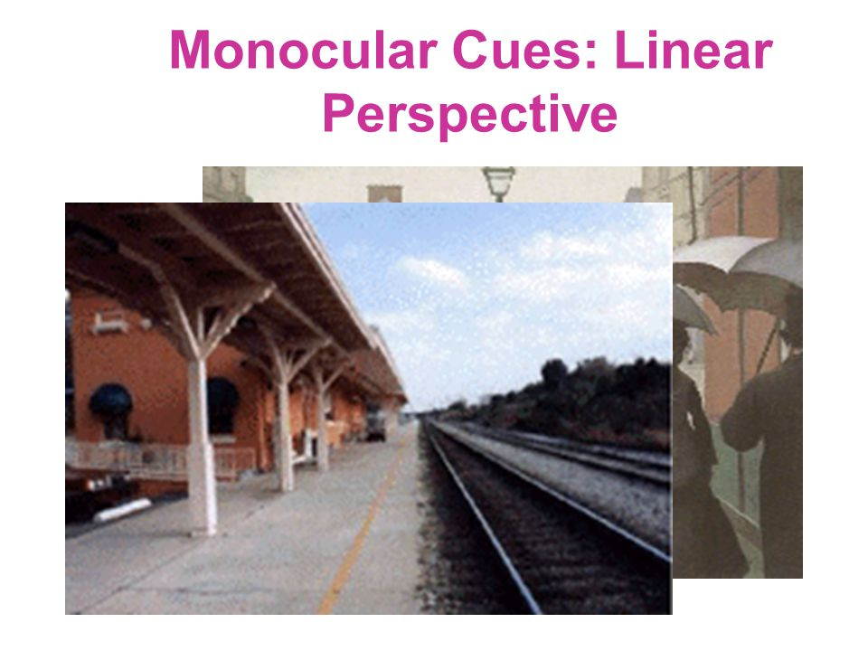 Monocular Cues: Linear Perspective
