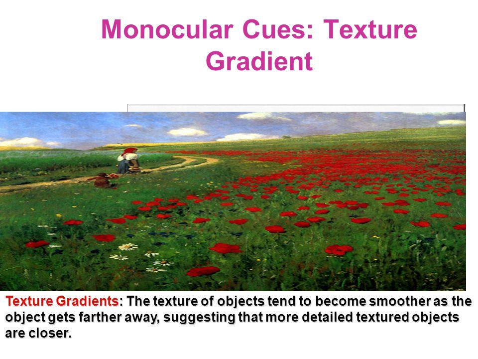 Monocular Cues: Texture Gradient