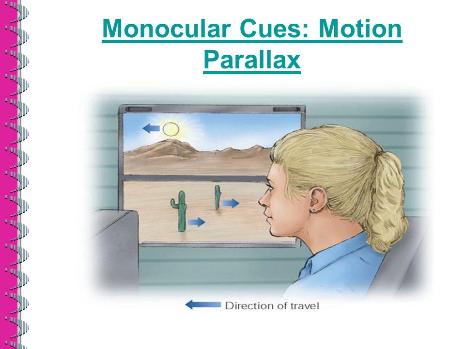 Monocular Cues: Motion Parallax