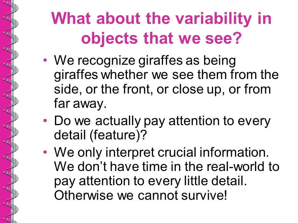 What about the variability in objects that we see