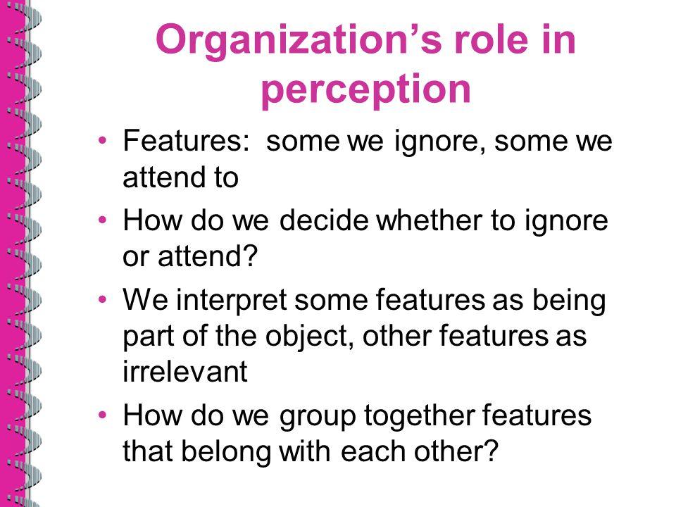 Organization's role in perception